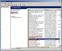 Install a Citrix License on a Citrix License Server, Citrix Licensing WMI service и Citrix License Management Console service
